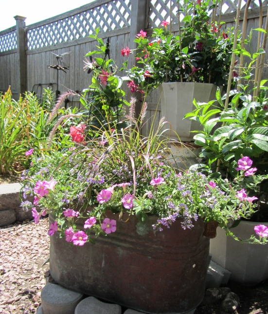 How Do You Use Containers To Decorate Your Yard?