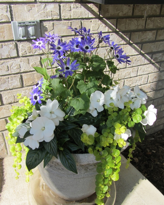 Container Gardening With Herbs, Flowers, and Vegetables