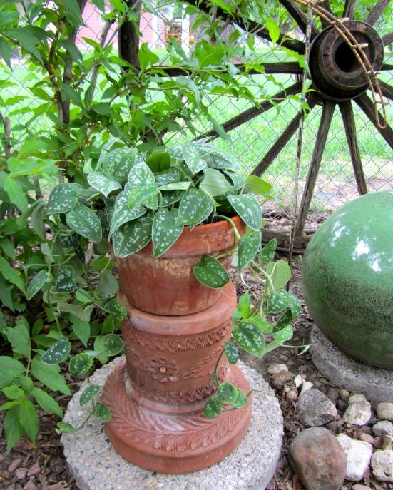 Gardener To Gardener