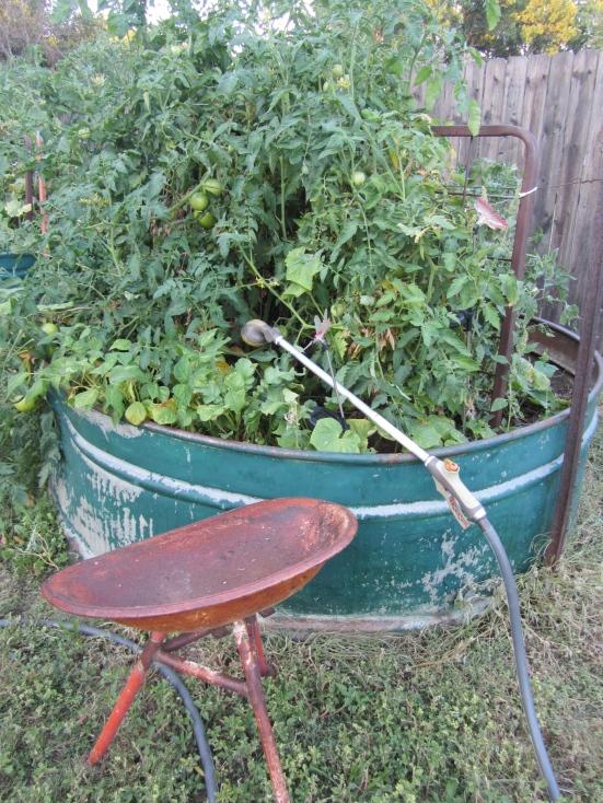 'An Easy Way To Garden'